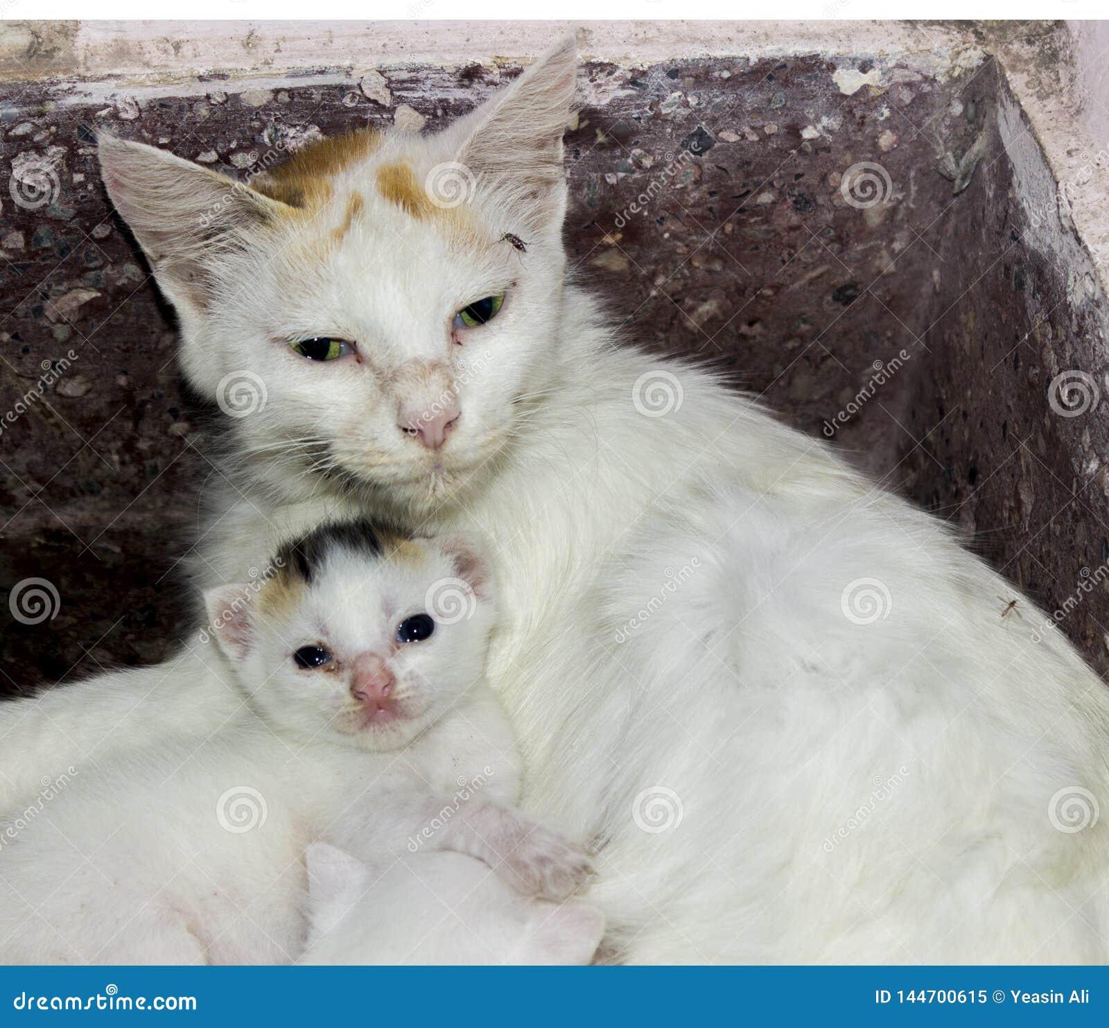 有她的婴孩的母亲