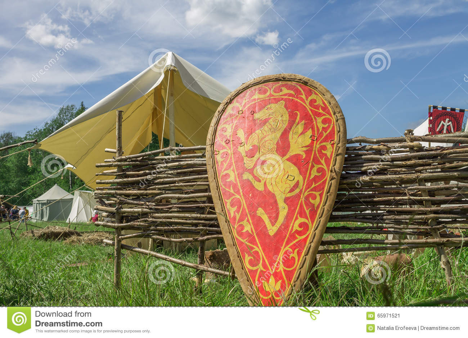 有家庭徽章的红色骑士的盾在草的