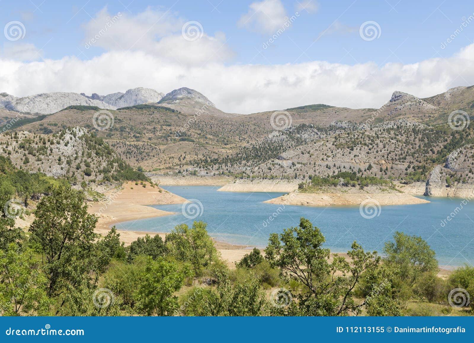 有山的湖在背景和树中
