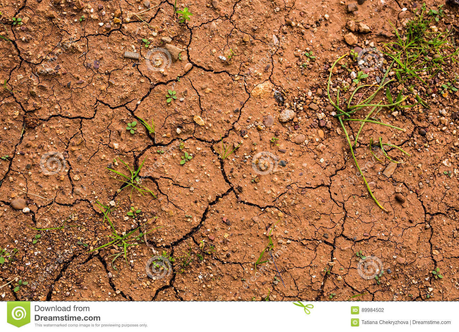 有干燥和破裂的陆运的地产