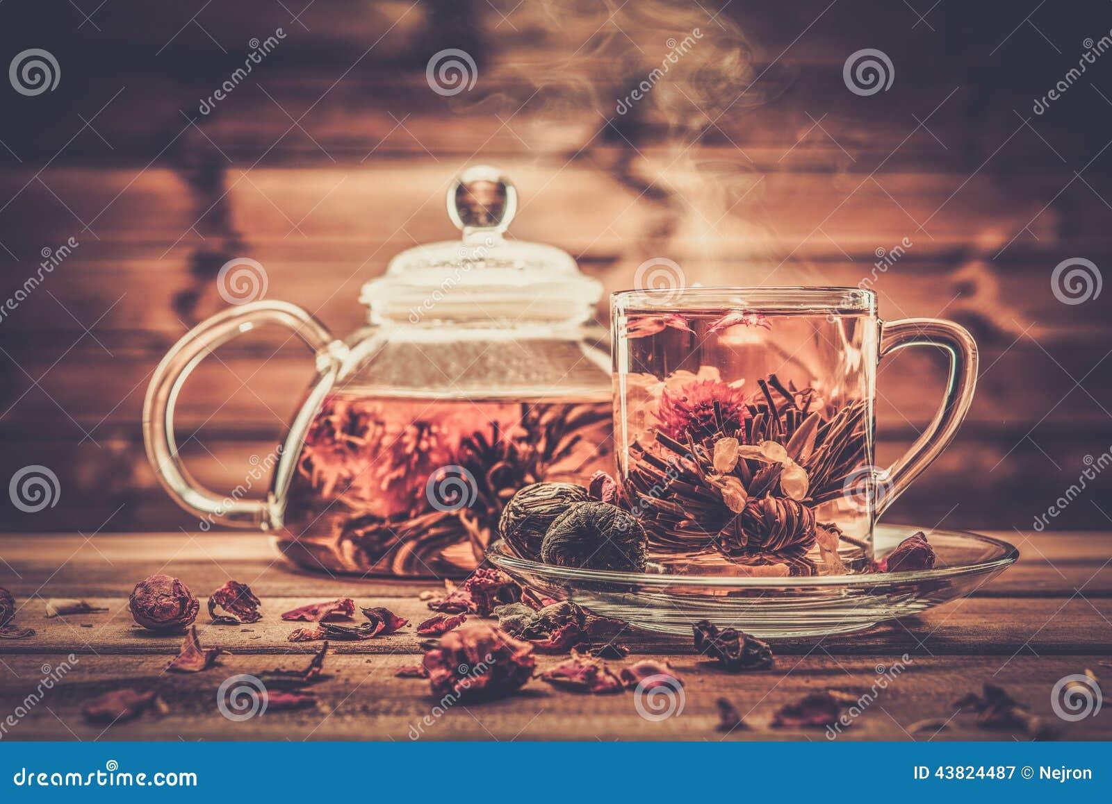 有开花的茶花的玻璃茶壶