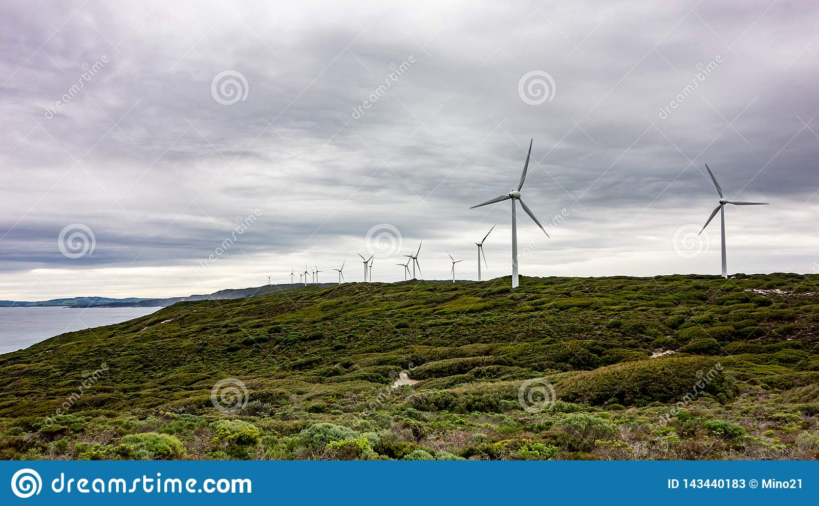 有很多涡轮的风力场在阿尔巴尼风力场