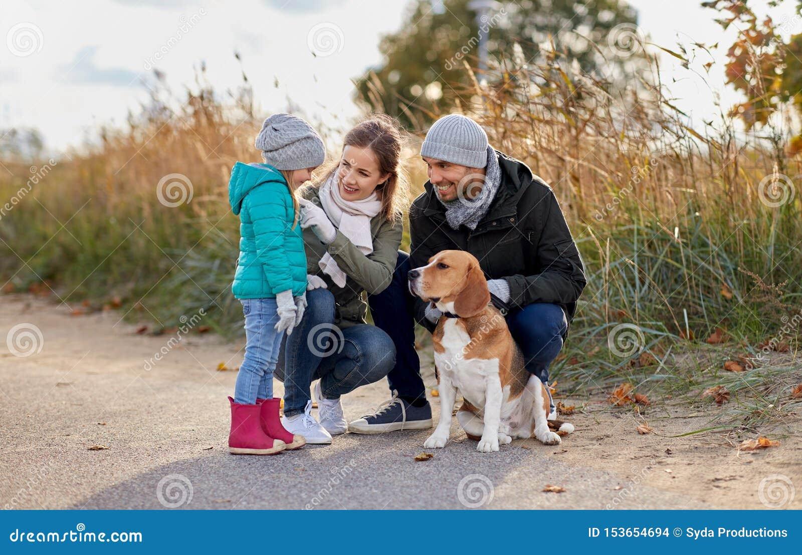 有户外小猎犬狗的幸福家庭在秋天