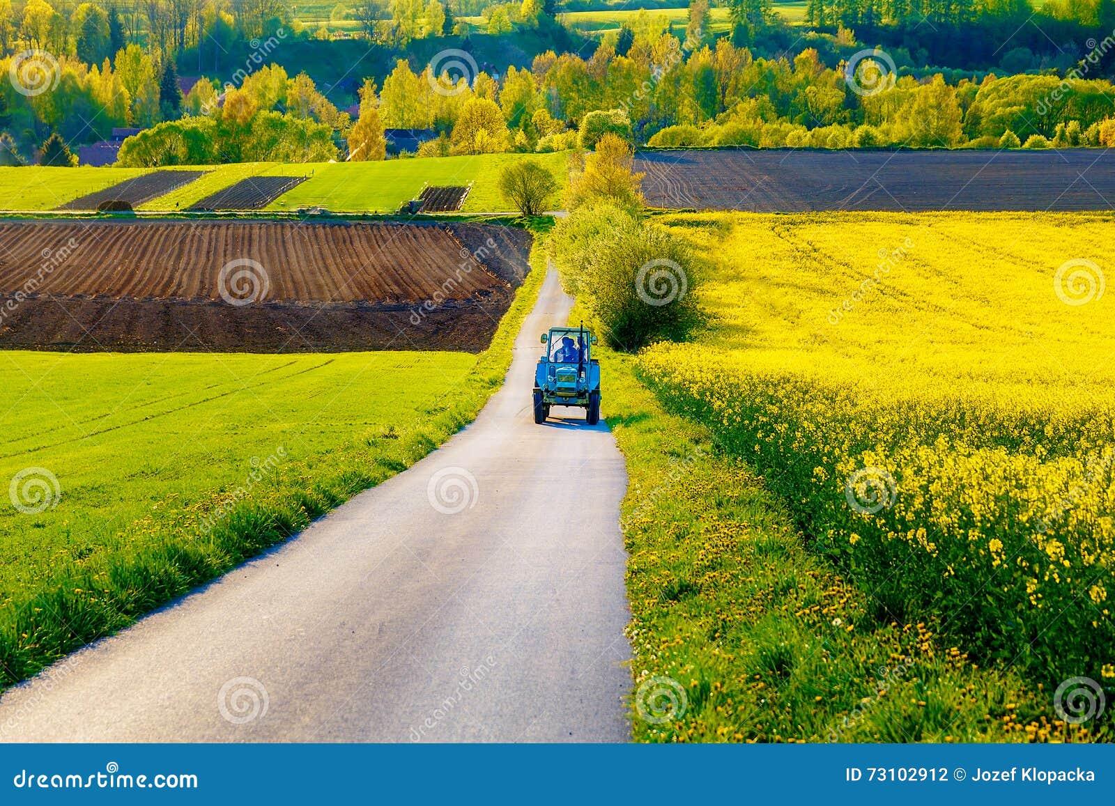 有拖拉机的路在与花草甸和领域的一个美好的区域 斯洛伐克,中欧, Liptov