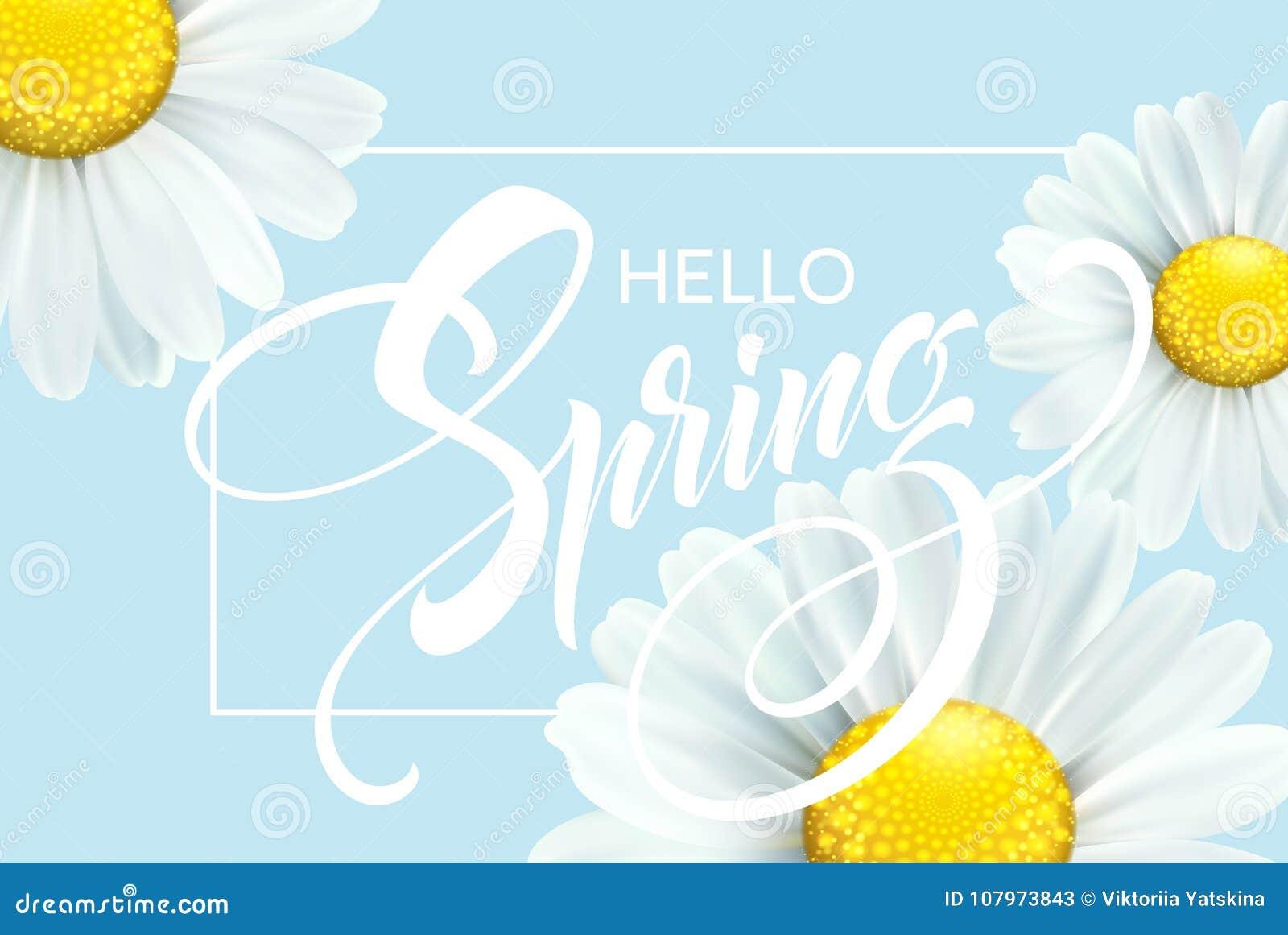 有春天花的-开花的戴西书法题字你好春天 也corel凹道例证向量