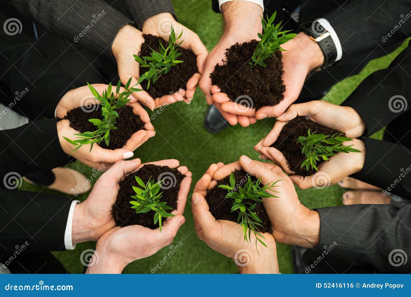 有植物和土壤的买卖人手