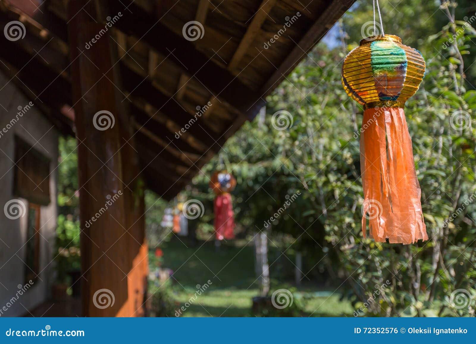 有植物和树的泰国庭院
