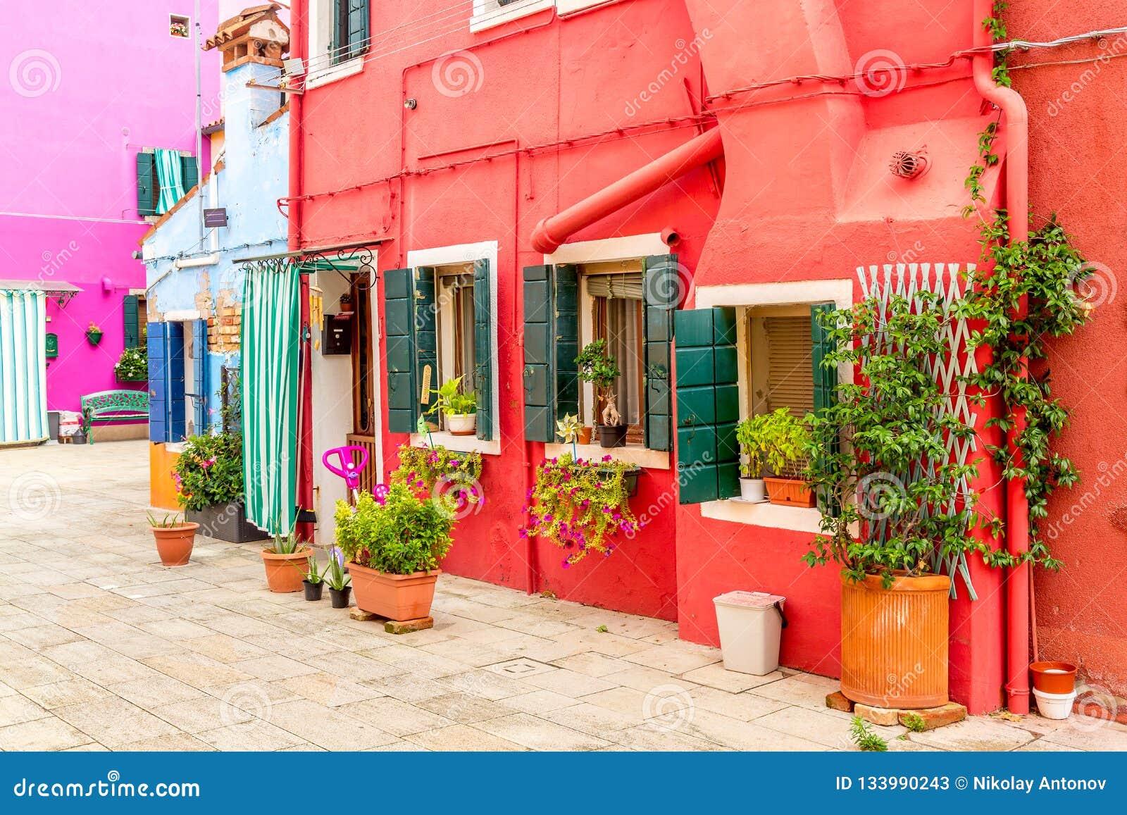 有植物的美丽的五颜六色的红色小屋在威尼斯,意大利附近的Burano海岛