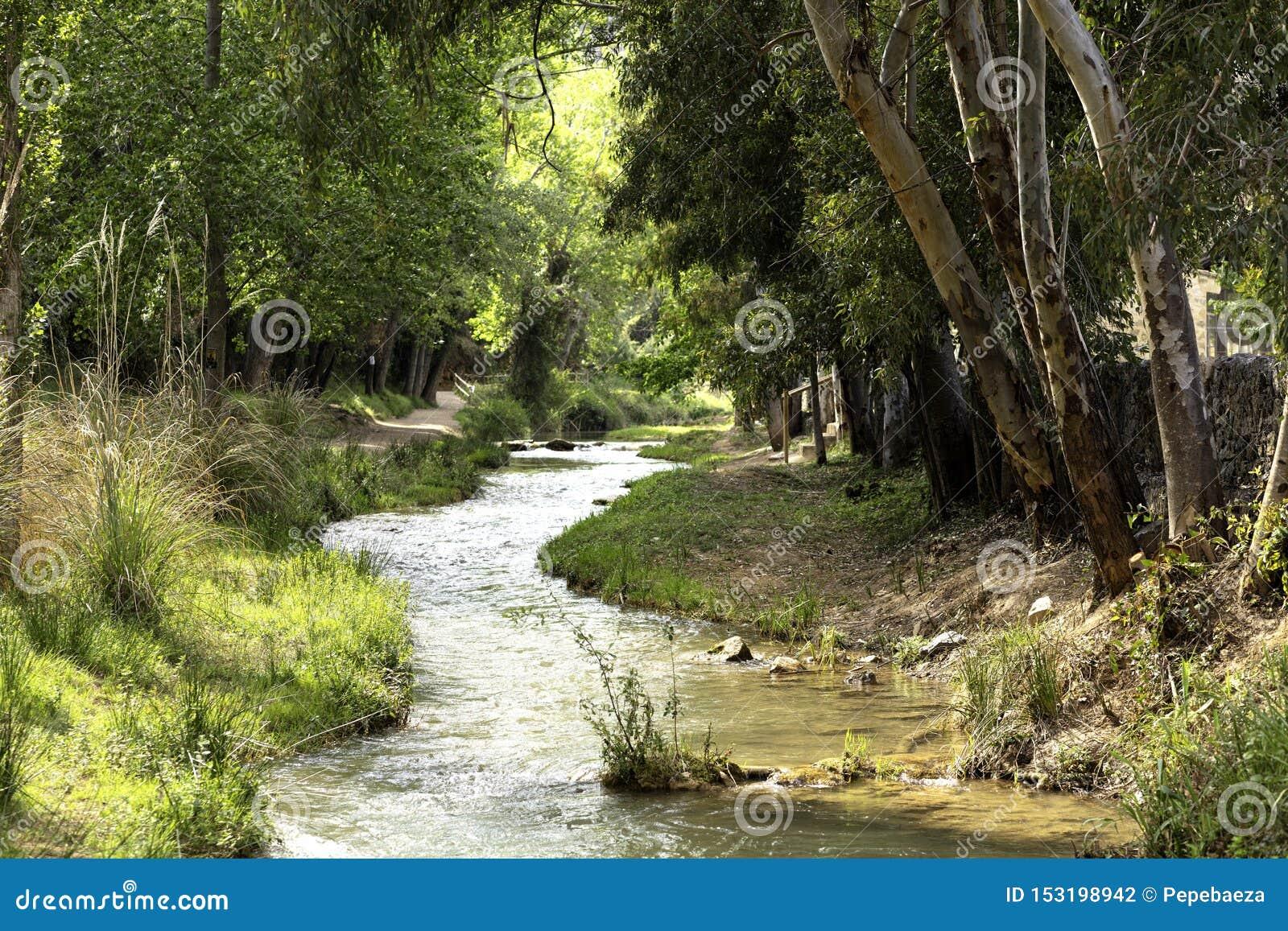有河流动的水路线