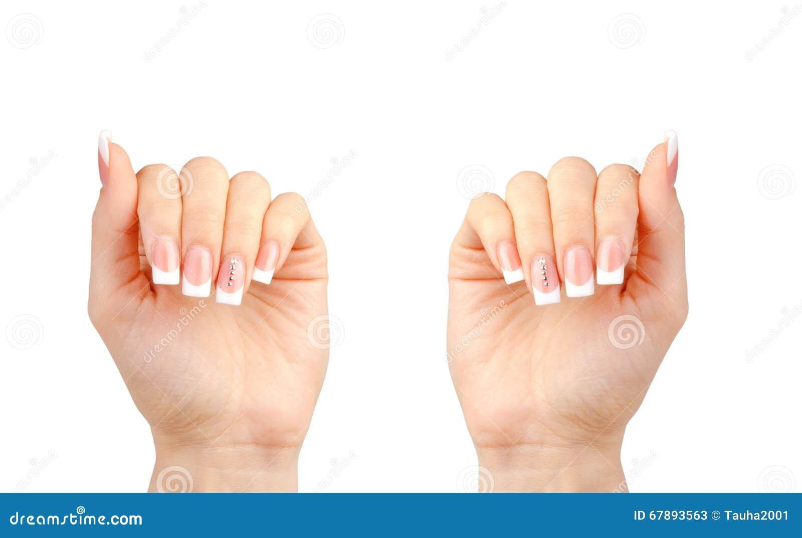 有法式修剪的美丽的妇女的手在白色