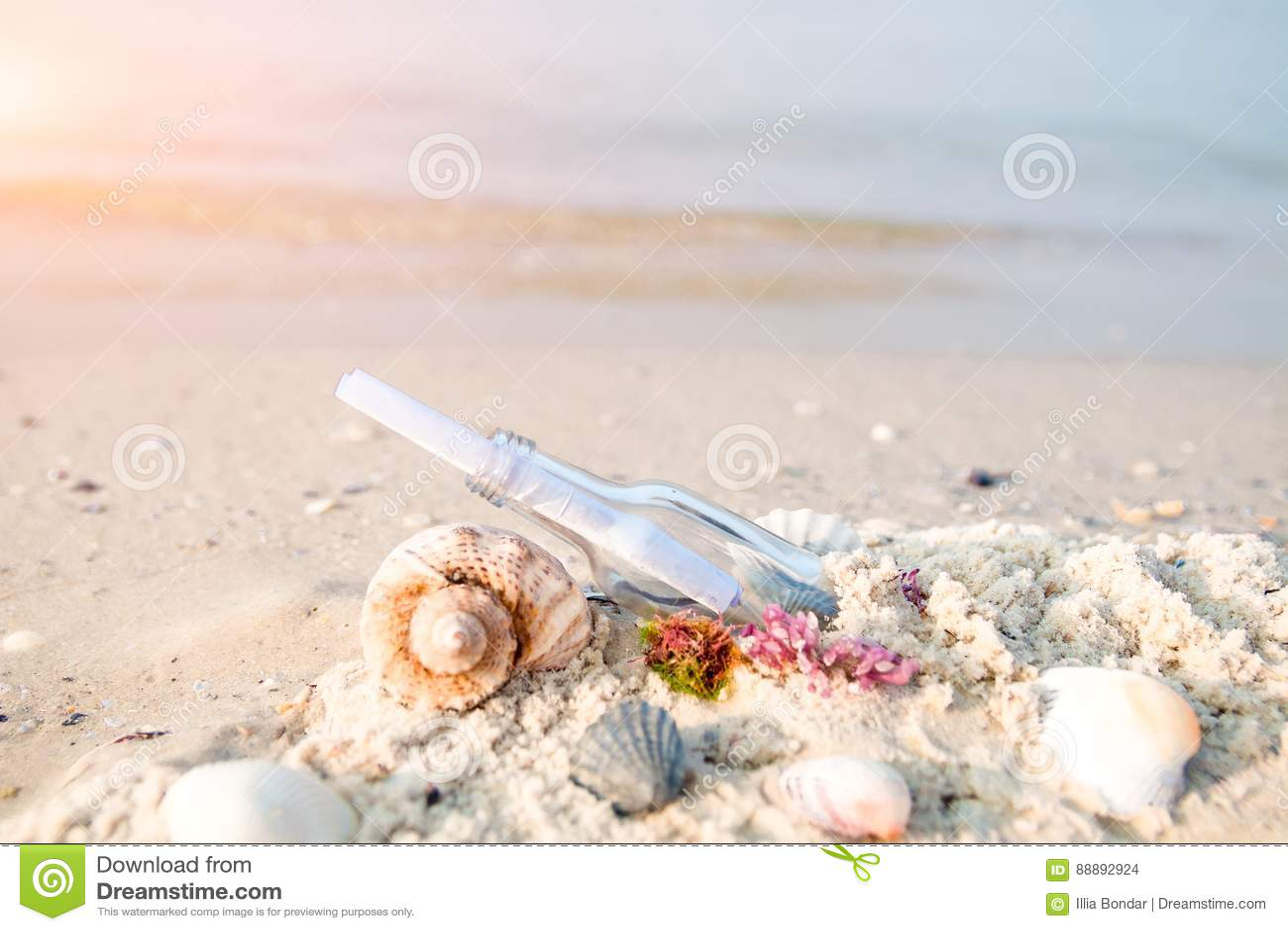 有消息的在海滩的瓶或信件在贝壳附近 sos
