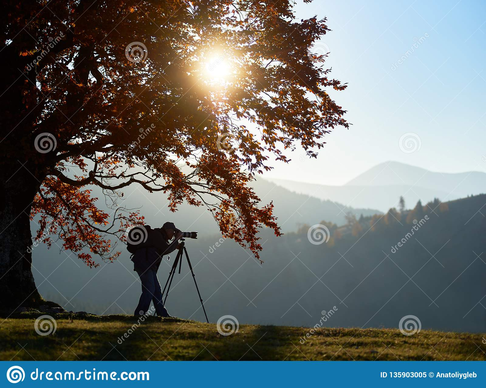 有照相机的徒步旅行者旅游人在山风景背景的象草的谷在大树下