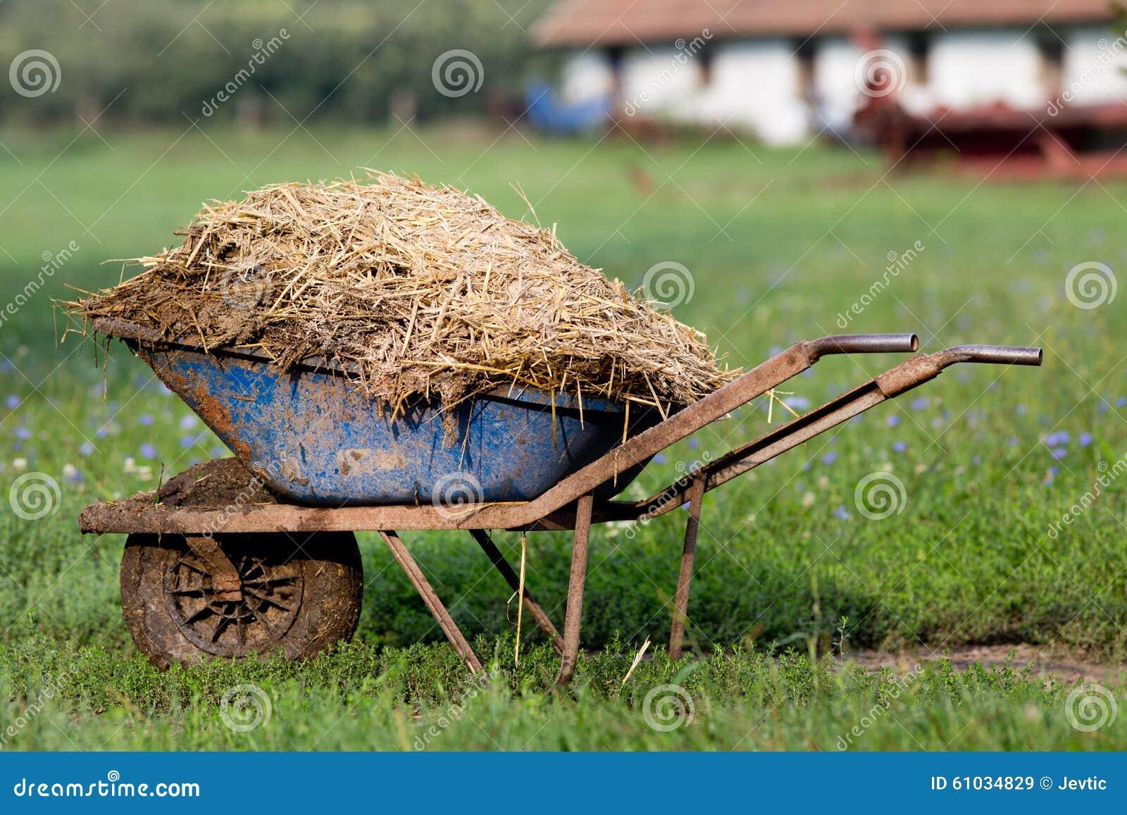 有牲畜粪肥的独轮车