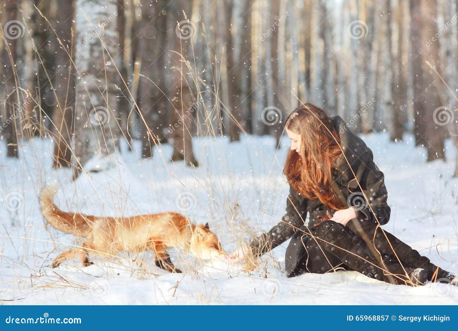 狐狸��h����j˞j���_女孩和狐狸在冬天森林里.