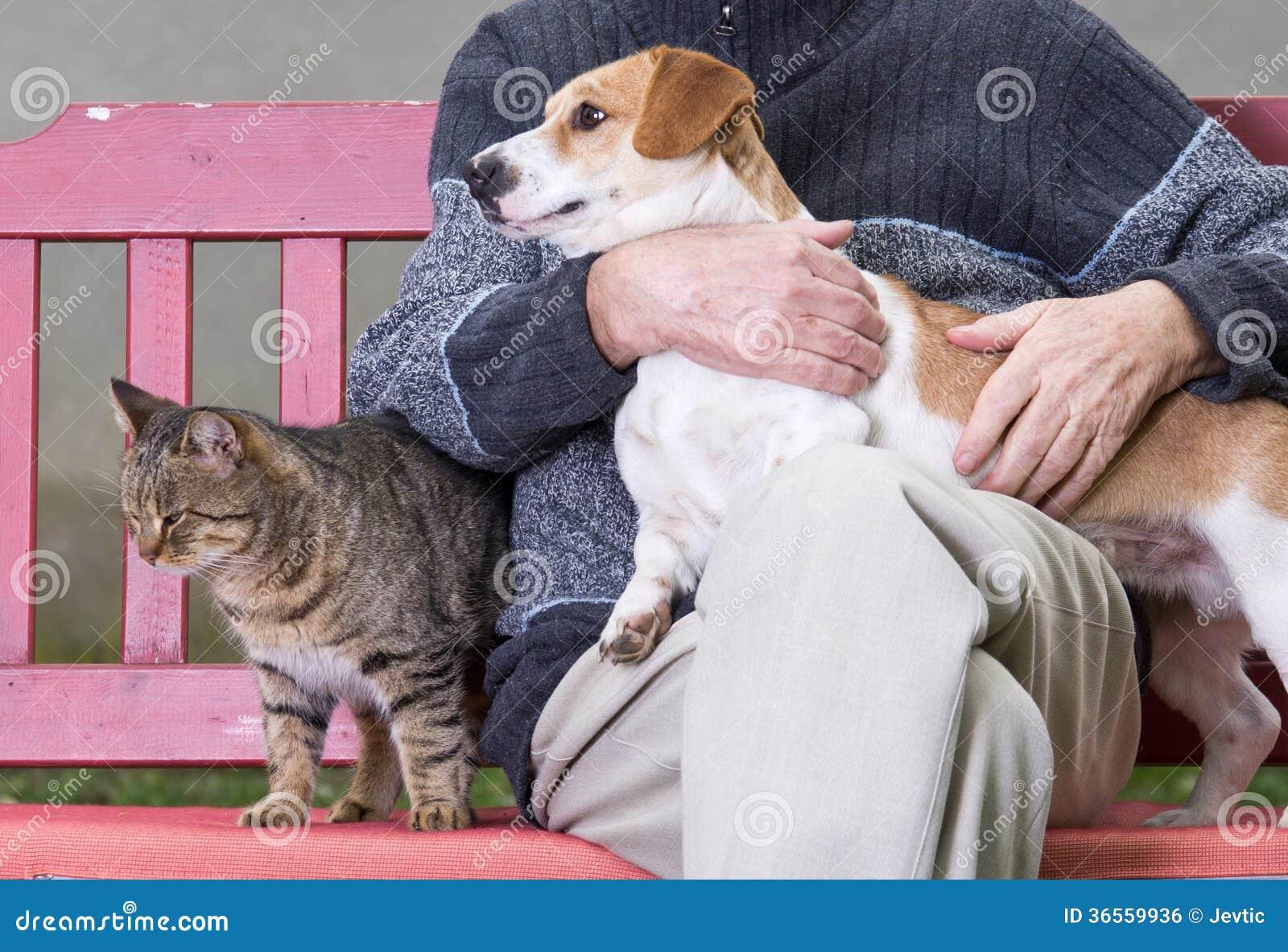 有狗和猫的人