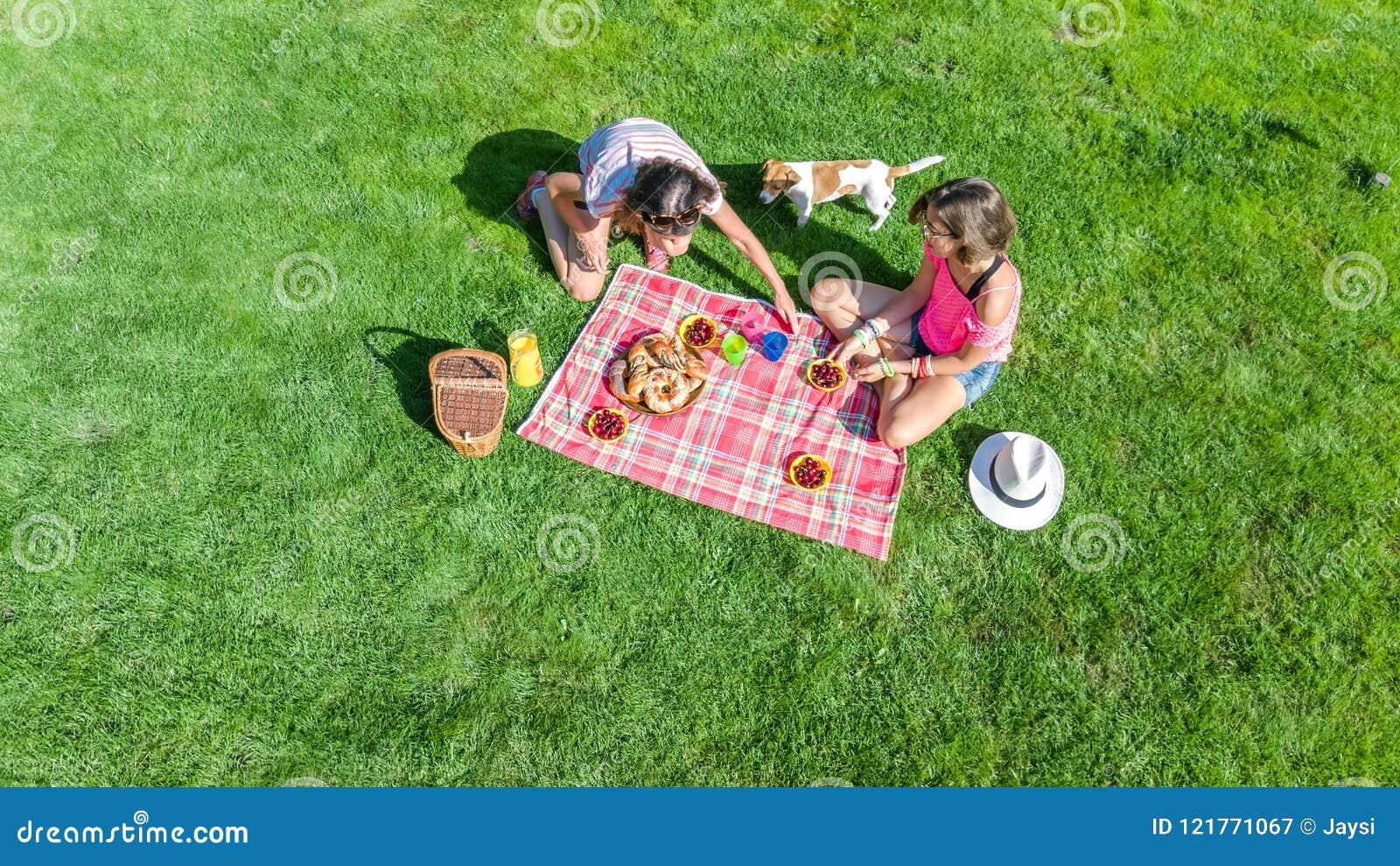 有狗的女性朋友有野餐在公园,坐草和吃健康饭食的女孩户外,空中