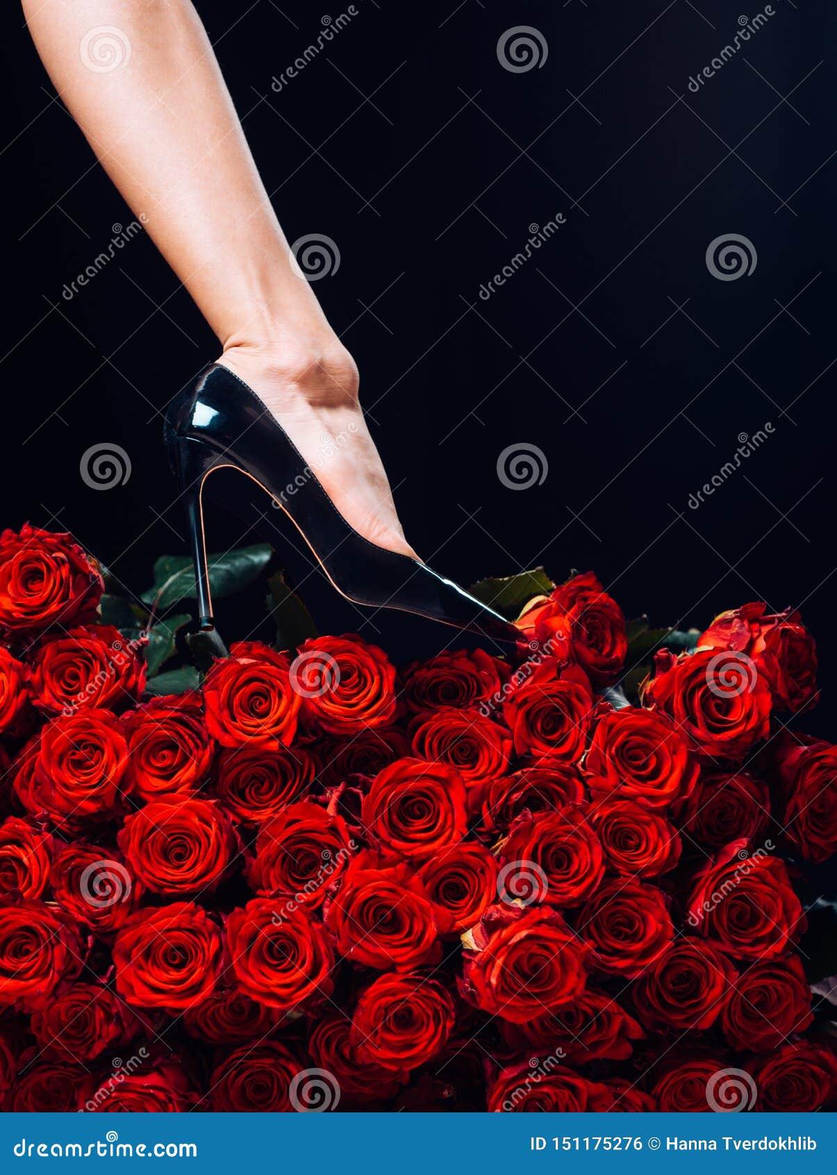 有玫瑰花瓣的性感的妇女腿 健康妇女腿和罗斯在黑 静脉,静脉曲张,女性健康