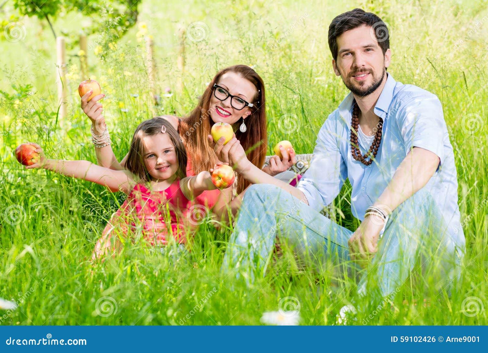 有的家庭在草甸的野餐用健康果子