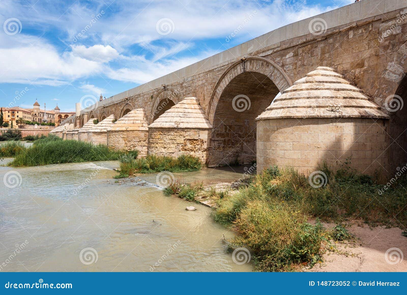 有科多巴大教堂清真寺的罗马桥梁在背景中 o