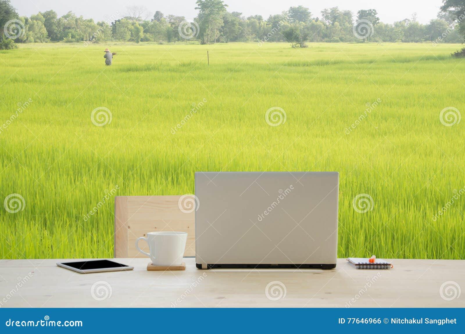 有笔记薄的办公桌,笔记本、铅笔和咖啡杯在米种田背景