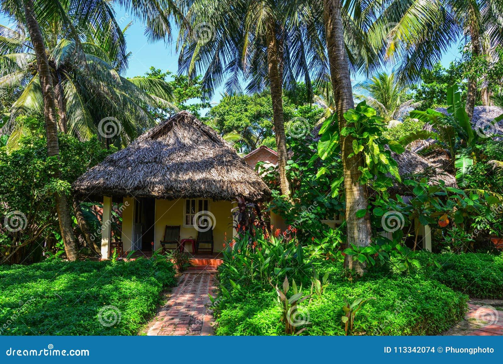 有绿色树庭院的避暑别墅