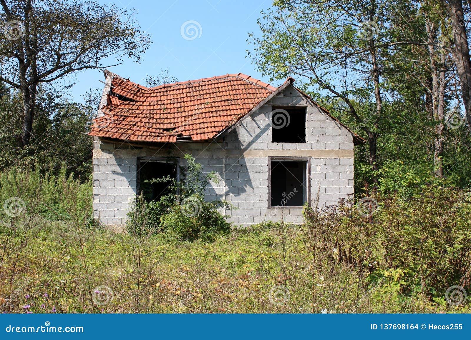 有缺掉完全地被围拢的窗口和倒塌的屋顶的被毁坏的未完成的小家庭房子与长得太大的植被