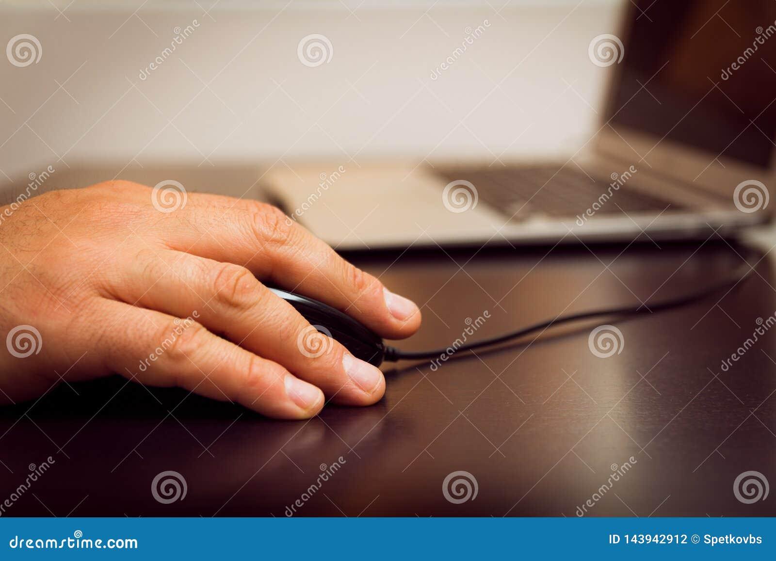 有老鼠的,膝上型计算机手