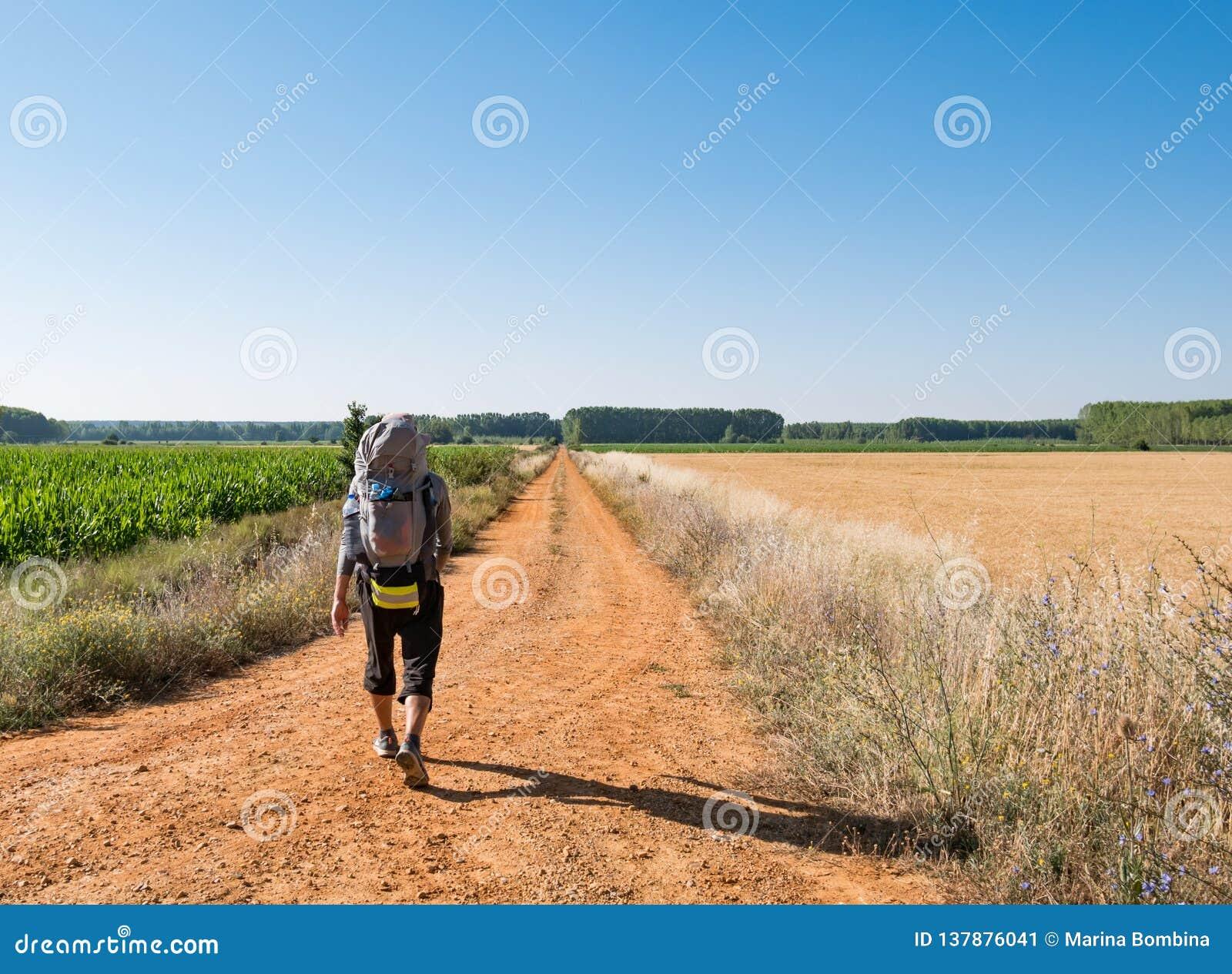 有背包的走孤独的香客Camino de圣地亚哥在西班牙,圣詹姆斯方式
