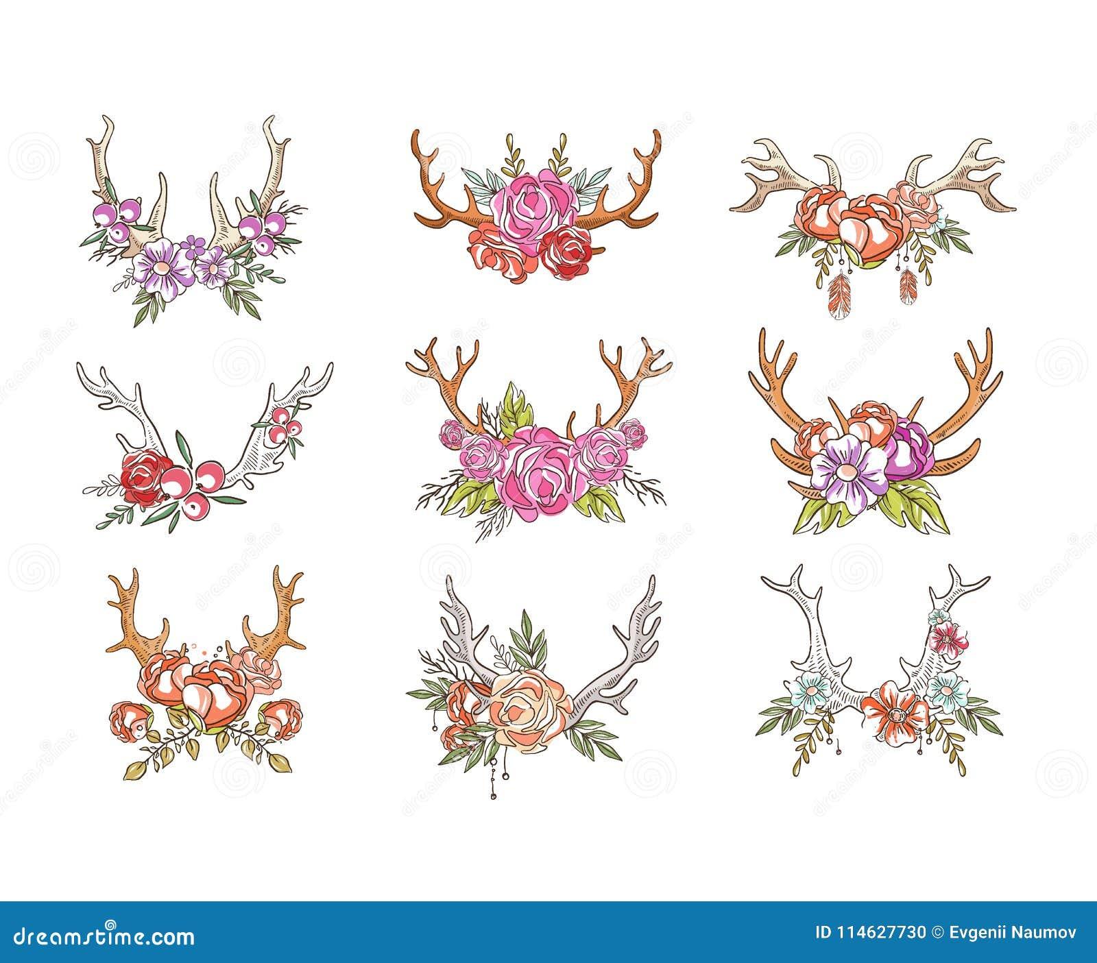 有花的鹿垫铁设置了,与鹿角传染媒介例证的手拉的花卉构成在白色背景