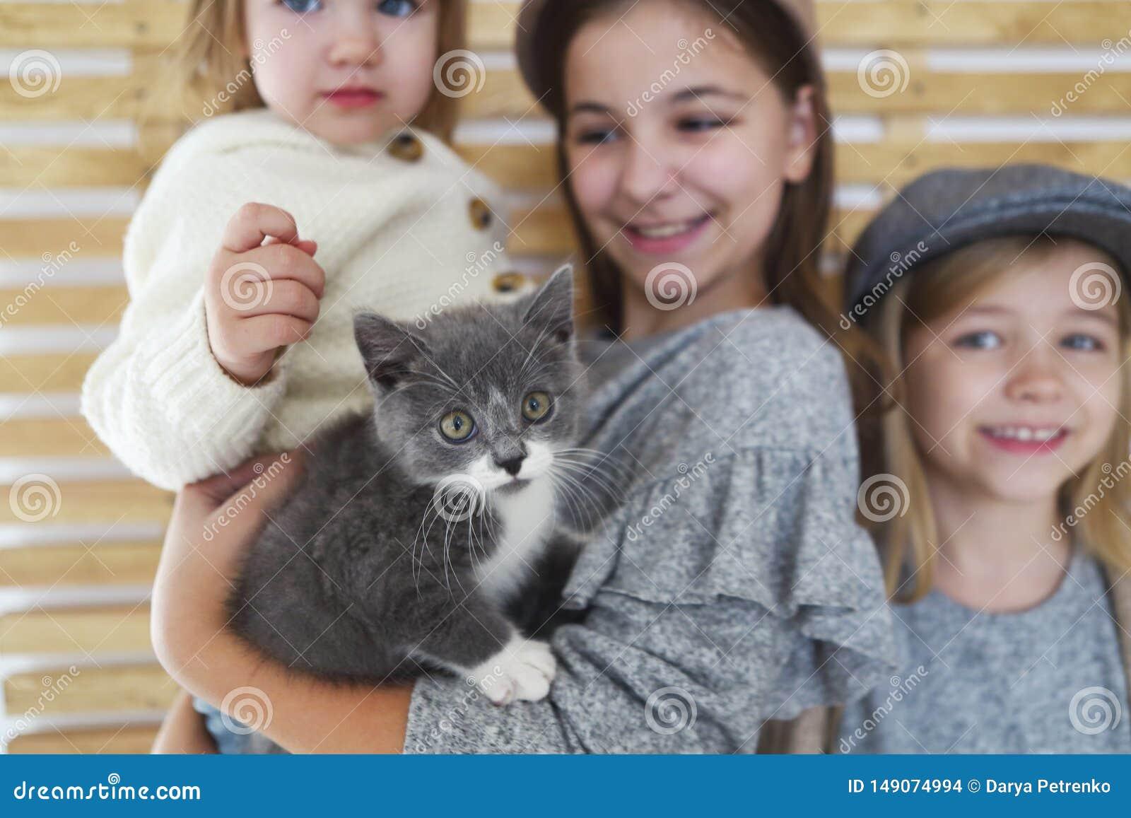有英国小猫的时尚逗人喜爱的女孩姐妹在胳膊