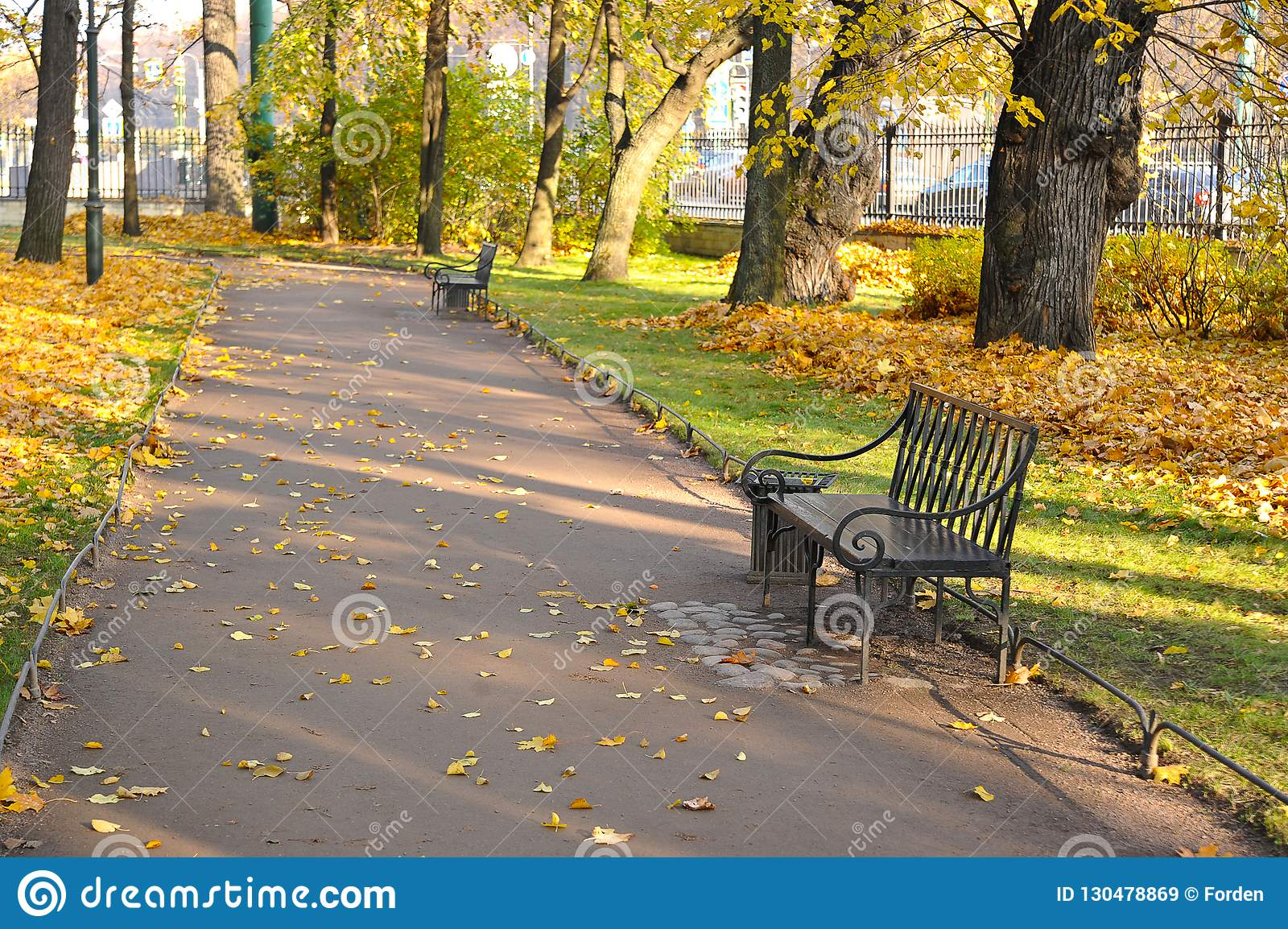 有落叶和长凳的秋天公园