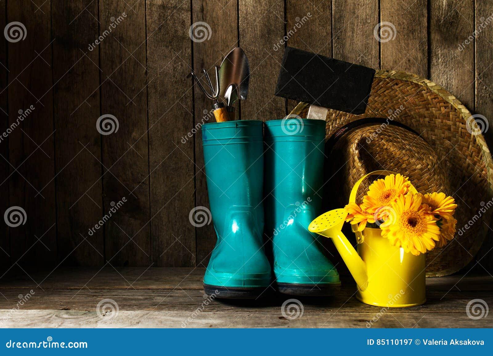 有蓝色胶靴的园艺工具,染黄春天花