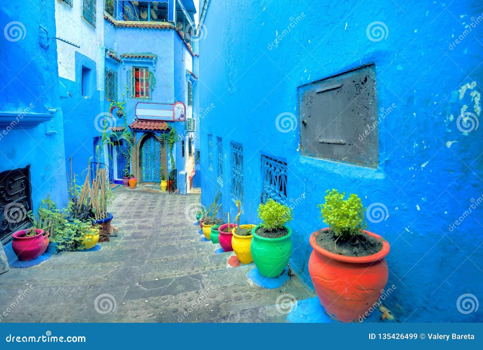 有蓝色被绘的墙壁和五颜六色的花盆的街道在舍夫沙万老麦地那  它由它的Mogador的葡萄牙名字也知道