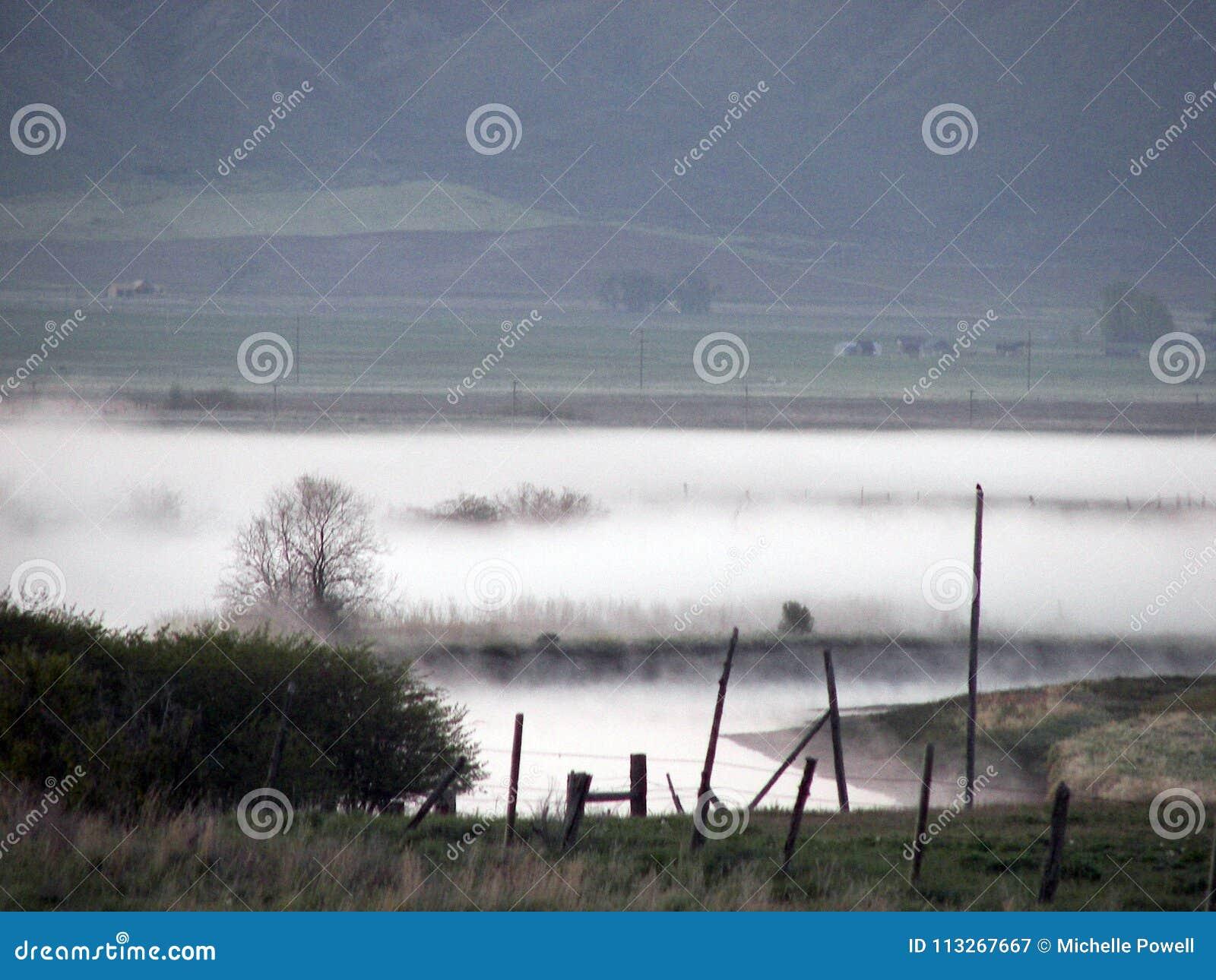 有薄雾的早晨