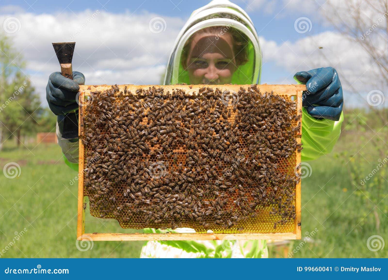 有蜂窝的蜂农