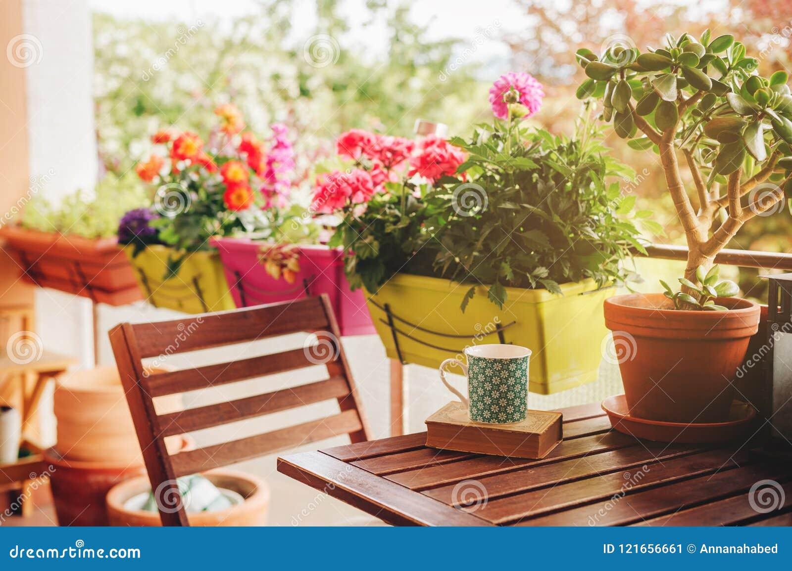 有许多盆的植物的舒适夏天阳台