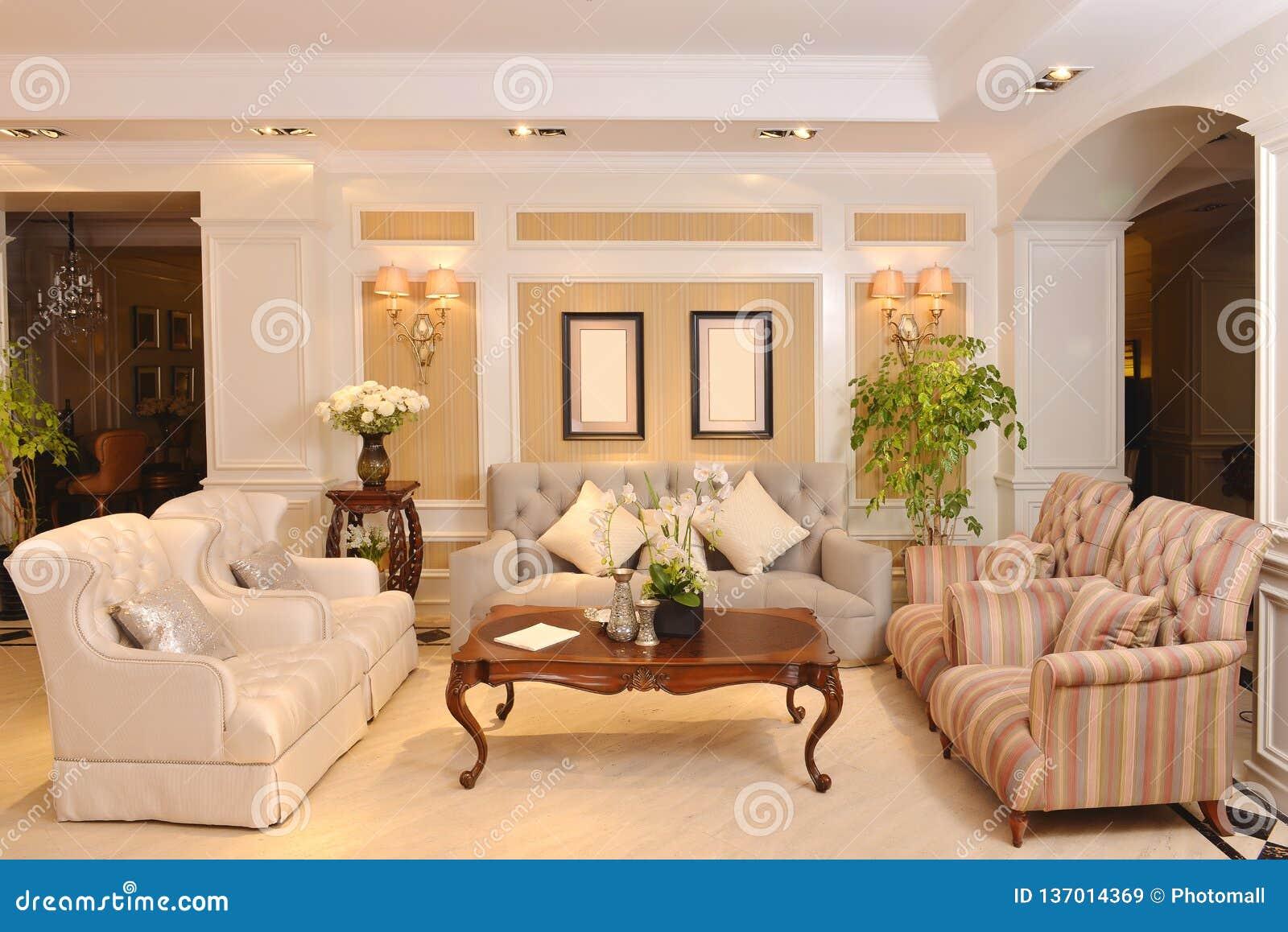 有豪华布料沙发家用电器的客厅