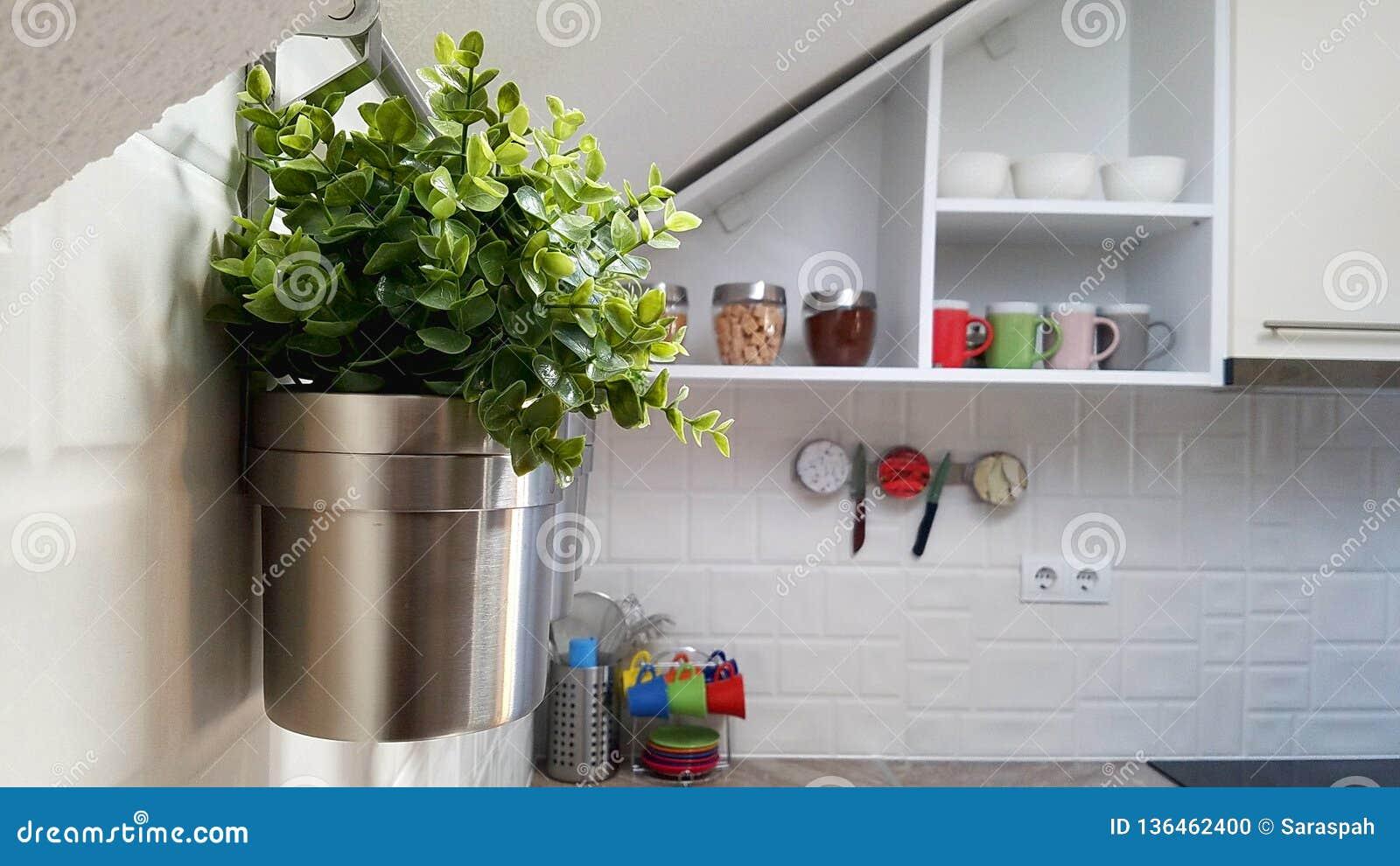 有钢罐的白色现代厨房