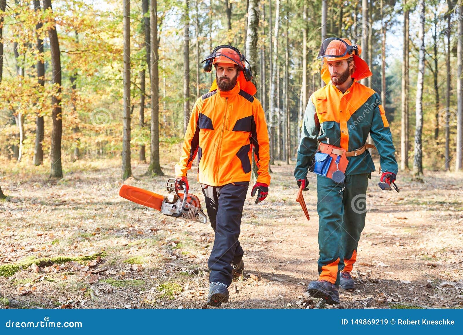 有锯和防护服装的伐木工人在森林里