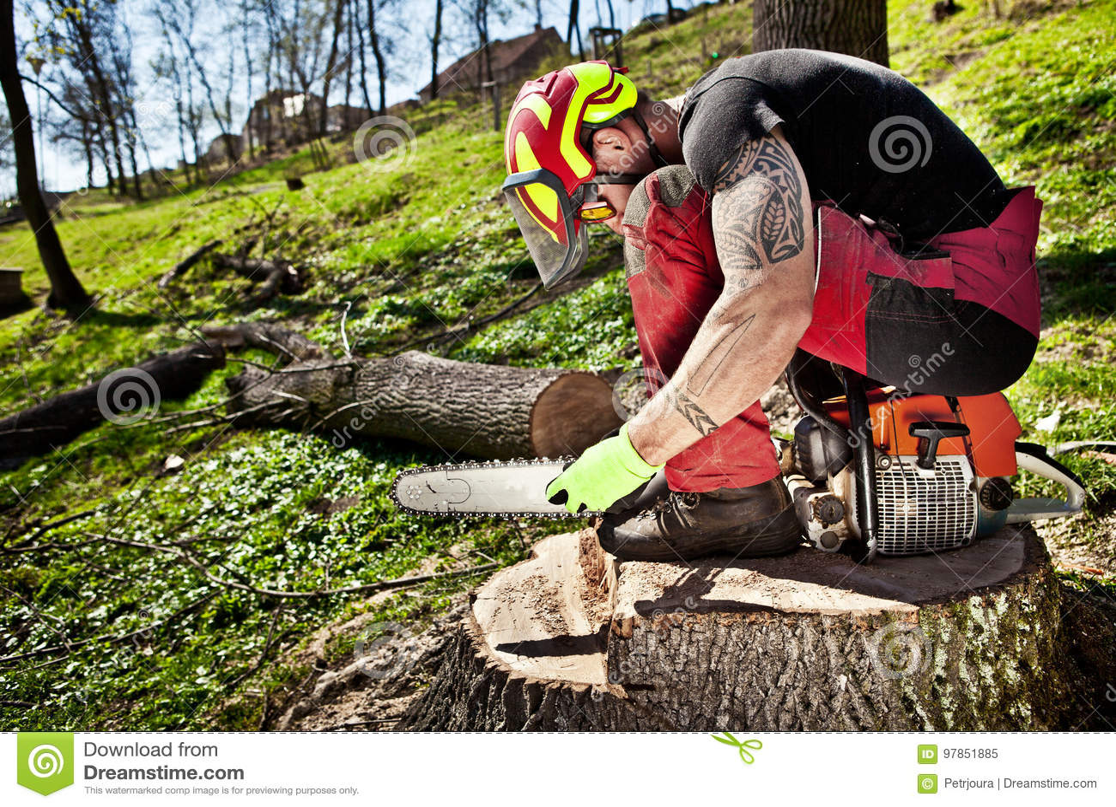有锯的伐木工人