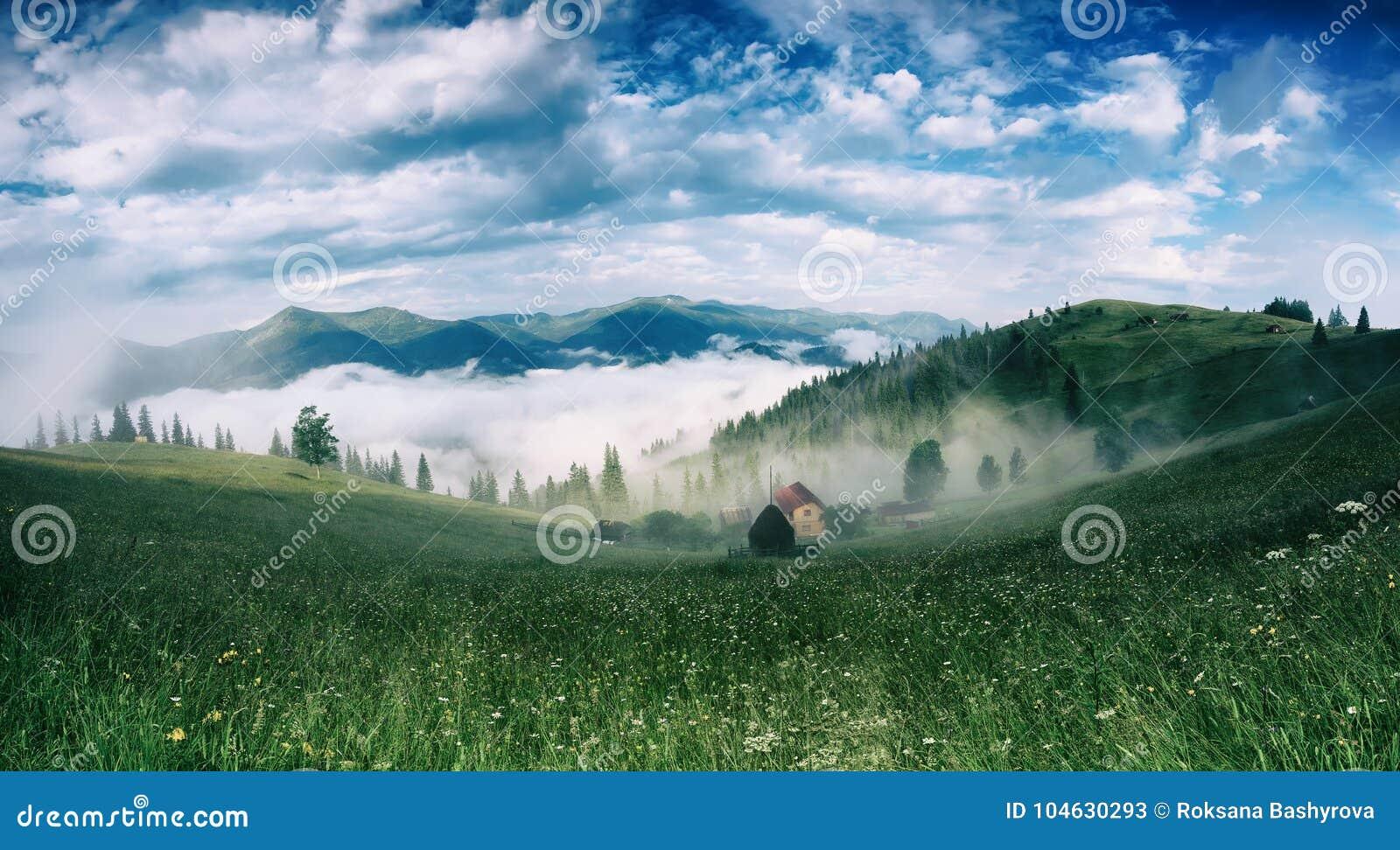 Download 有雾的早晨横向 库存图片. 图片 包括有 神秘主义者, 神奇, 草甸, 国家(地区), 干草堆, 醉汉 - 104630293