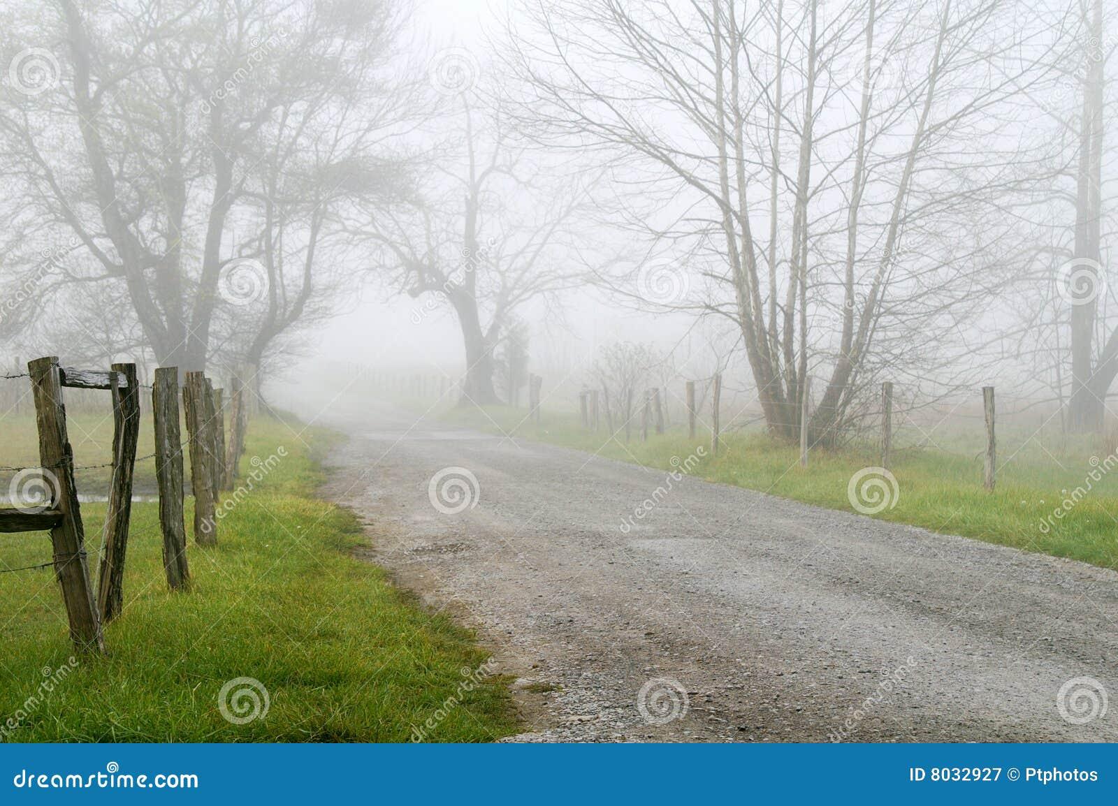 有雾的运输路线火花