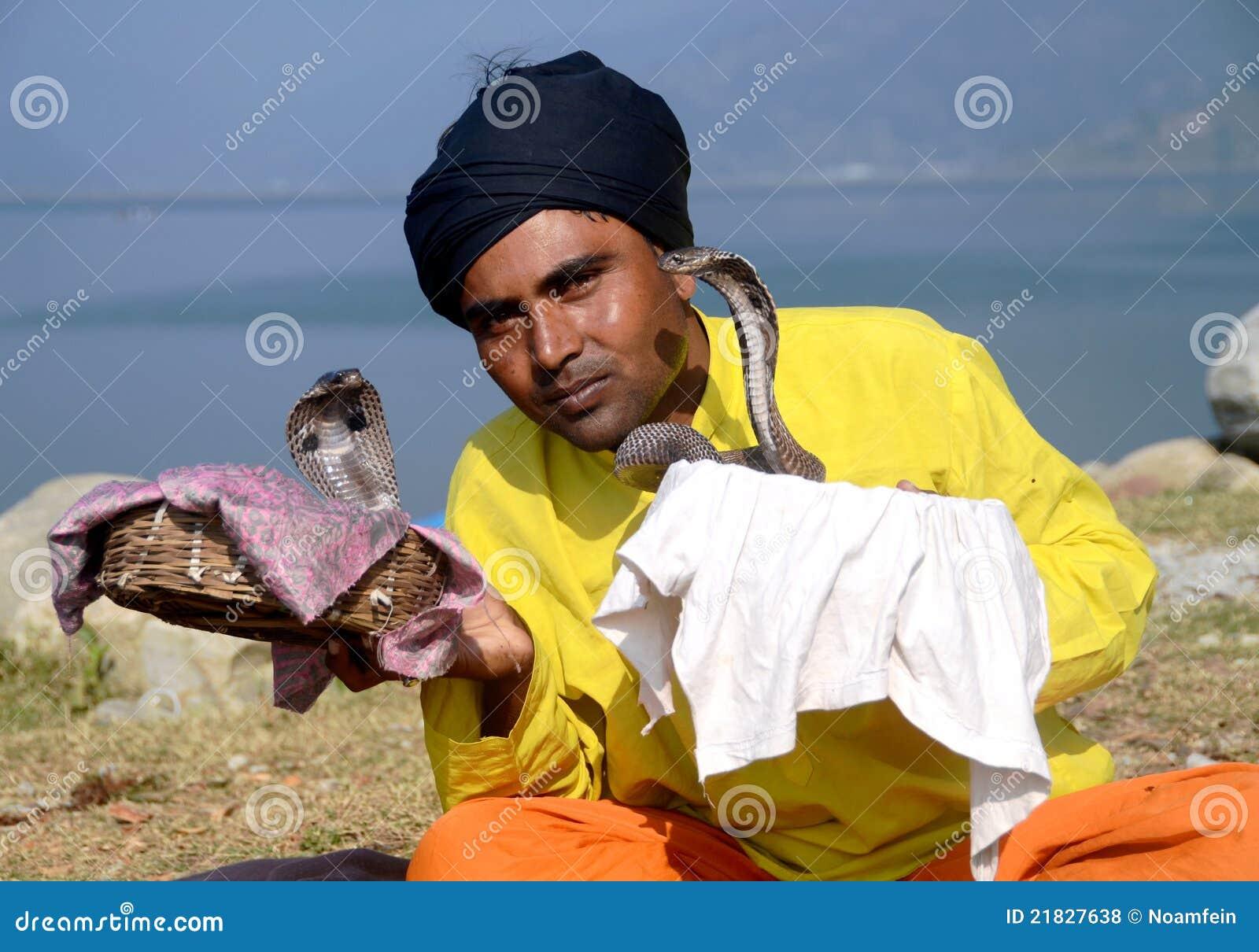 有魅力者尼泊尔蛇