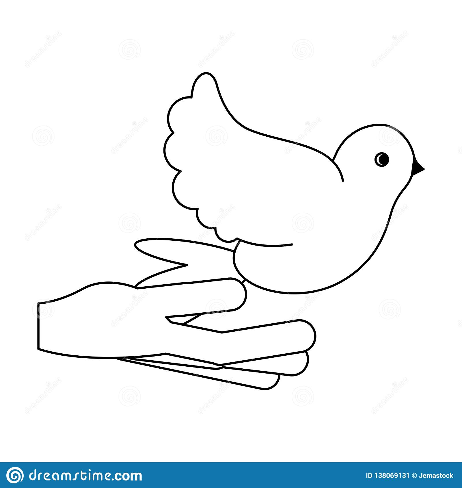 有黑白的鸠的手