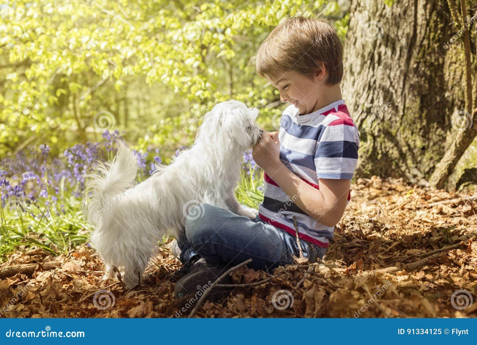 有他的小狗的Littlel男孩在森林里