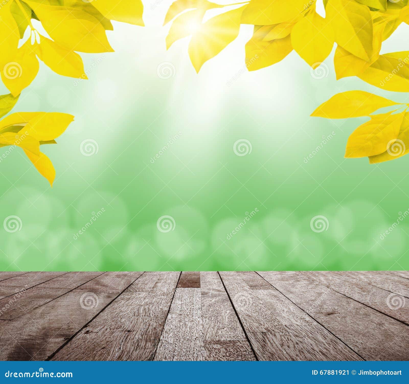 有绿色bokeh和阳光和木头地板的春天黄色叶子