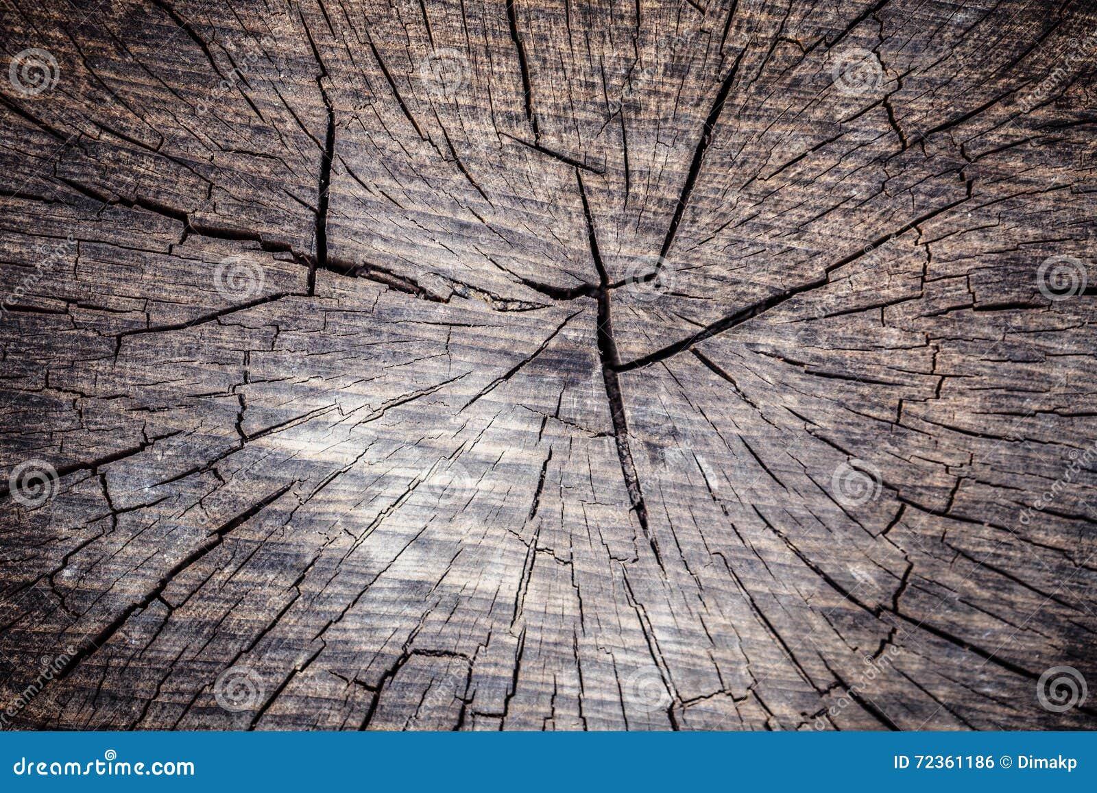 木圆环背景纹理