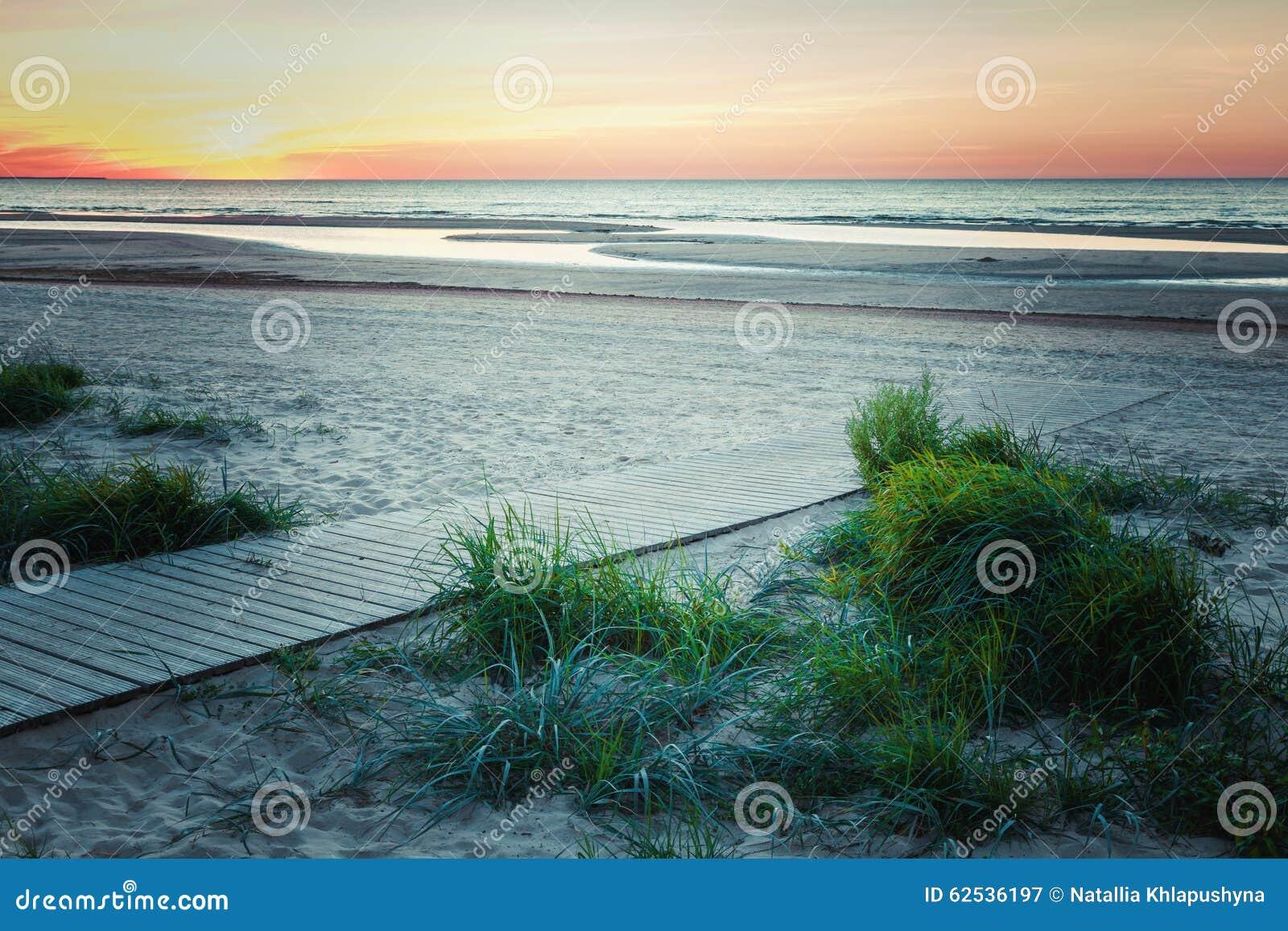 木小径向日落的海