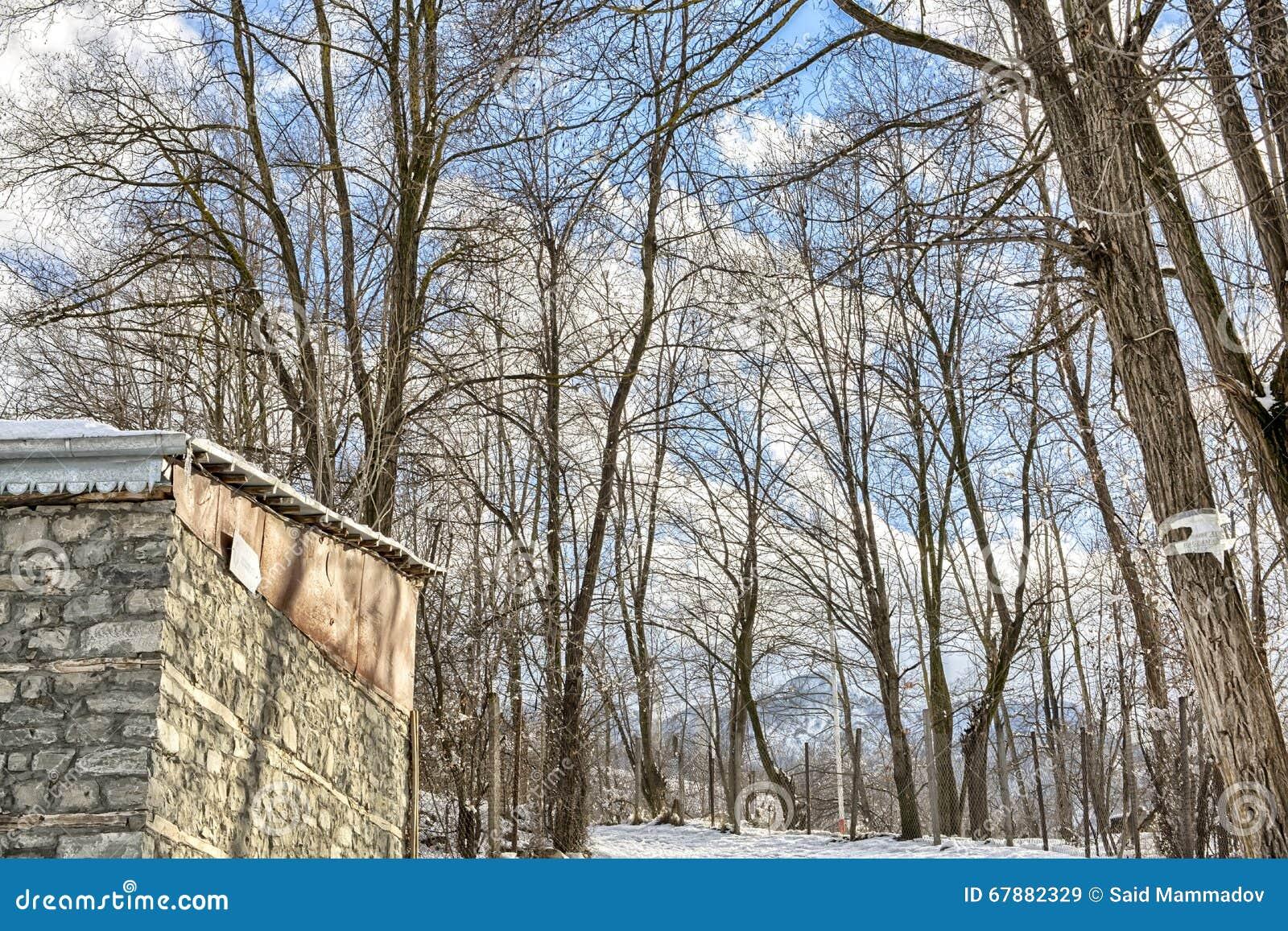 木教堂在北部一个多雪的森林的冬天 冬天在山村
