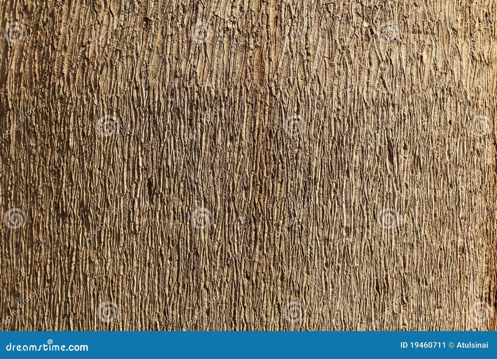 木背景的纹理